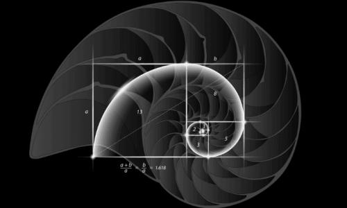 Leonardo Fibonacci ve Altın Oranın Ortaya Çıkışı